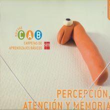 PERCEPCIÓN, ATENCIÓN Y MEMORIA 1. CARPETAS DE APRENDIZAJES BÁSICOS